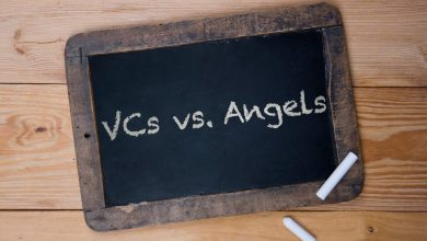 VCs vs Angels