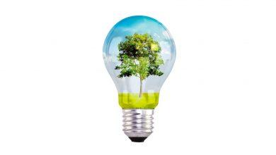 درخت نوآوری و خلاقیت