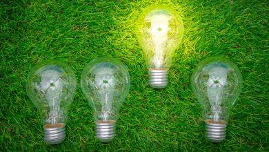 حمایت از کسب و کارهای محیط زیستی
