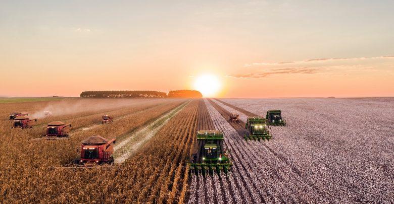 اولویتهای نوآوری در اکوسیستم کسب و کارهای کشاورزی ایران