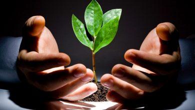 Photo of VC یا CVC ؟ کدام یک در اولویت جذب سرمایه قرار دارد؟
