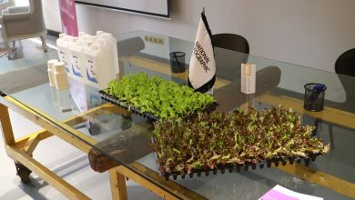 """Photo of رونمایی از محصولات جدید """"مزرعه ای درون جعبهی سیاه"""" در نت جئو سنتر"""