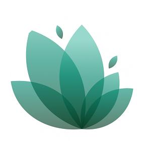 معرفی صندوق سرمایه گذاری جسورانه رویش لوتوس
