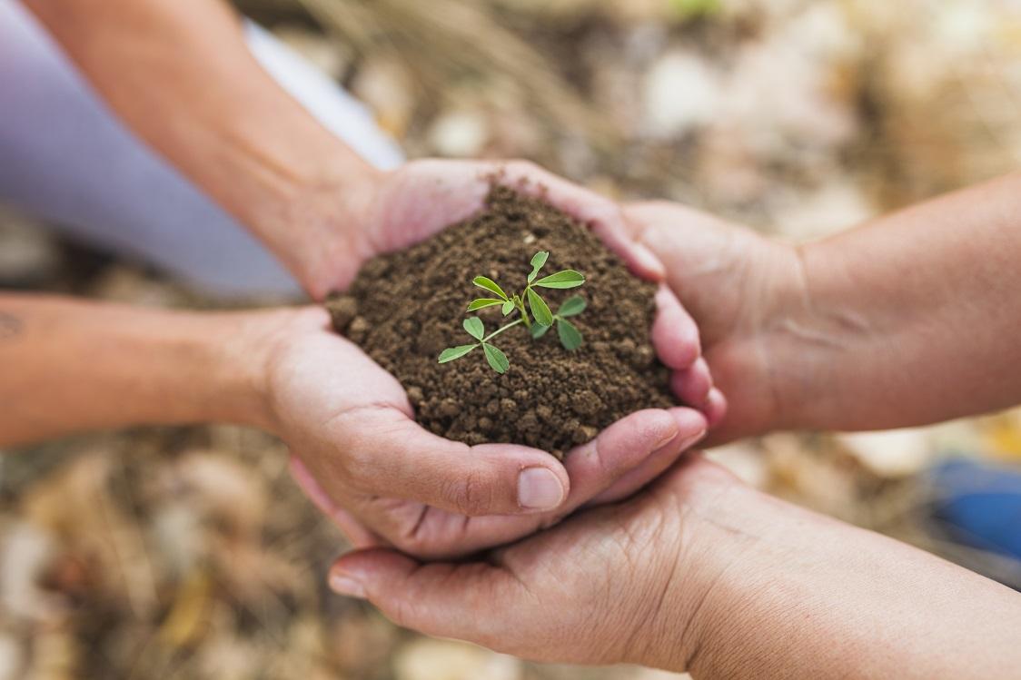 کدام دسته از کسب و کارهای کشاورزی ظرفیت مناسبی برای ایجاد استارتاپ دارند؟