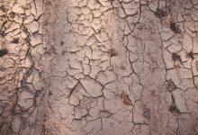 آشنایی با برترین استارت آپ های فعال در حوزه مدیریت آب و خشکسالی