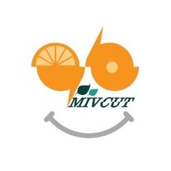 معرفی استارتاپ میوکات،فروشگاه اینترنتی بسته های میوه برش خورده و پذیرایی