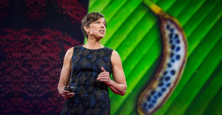 چطور ژنتیک میتواند میزان محصول را در زمینهای کشاورزی افزایش دهد