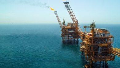 لزوم حمایت دولت از شرکت های دانش بنیان و نمایشگاه های تخصصی نفت و انرژی