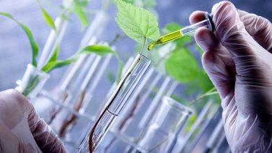 مرکز رشد مشترک پارک فناوری همدان و مرکز تحقیقات کشاورزی ره اندازی شد