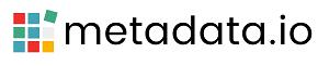 MetaData logo