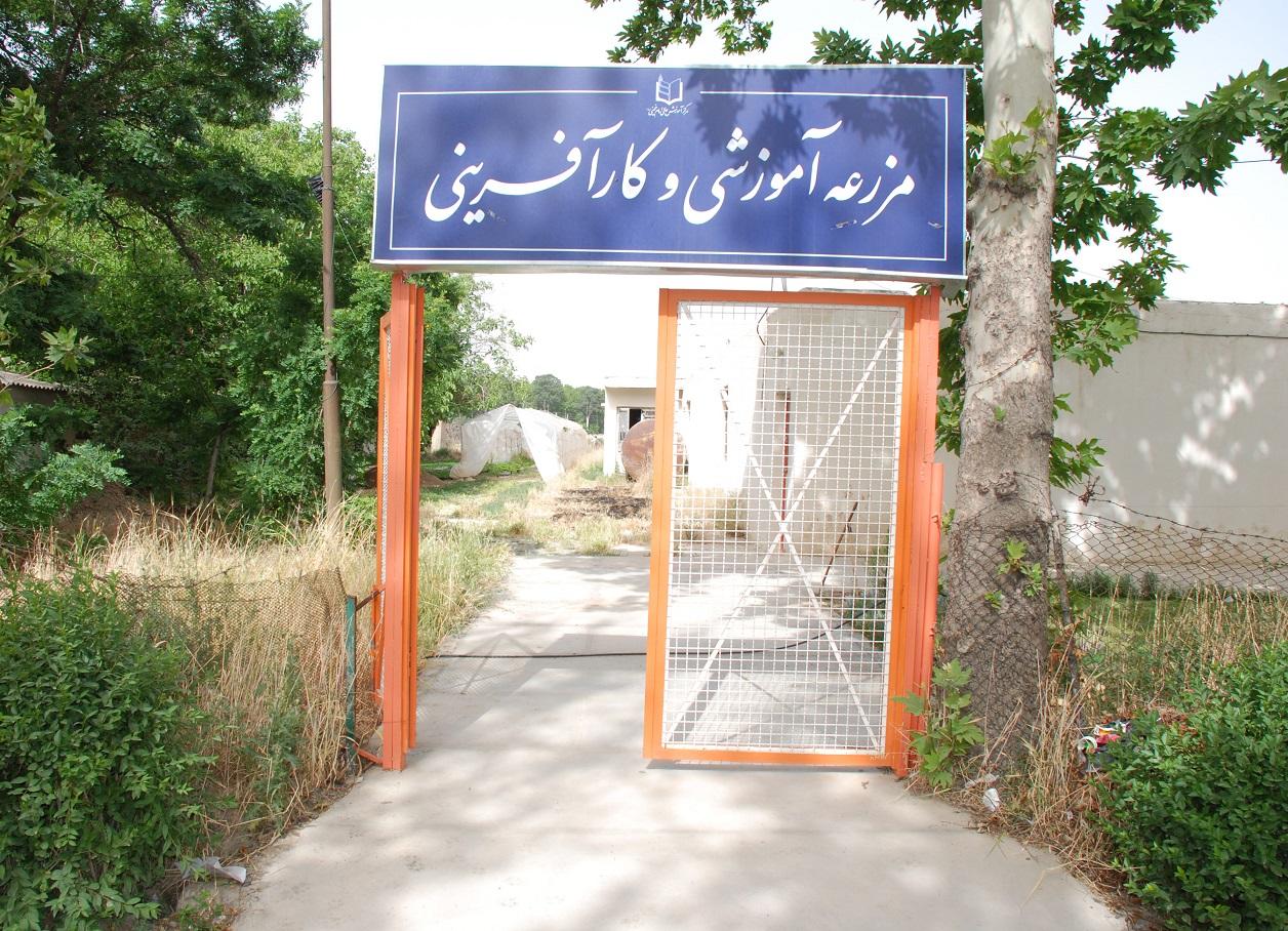 مزرعه آموزشی مرکز آموزش عالی امام خمینی (ره)