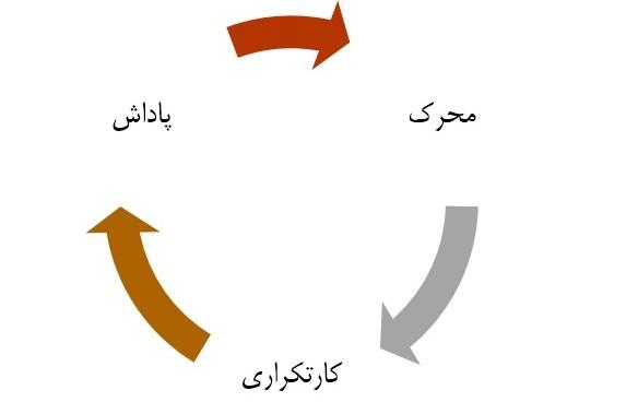 چرخه عادت