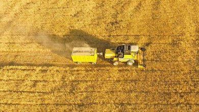 افزایش بازدهی تولید محصولات کشاورزی با داده های فضایی