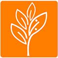 معرفی استارتاپ بیا تخفیف ، بستر ارائه دهنده خدمات تخفیف و خرید گروهی