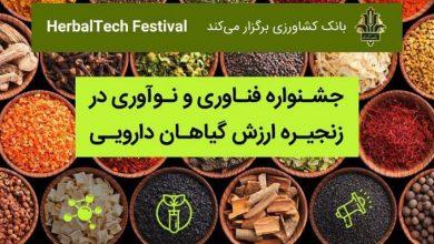 Photo of برگزاری جشنواره فناوری و نوآوری در زنجیره ارزش گیاهان دارویی