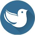 معرفی استارتاپ توییتنا ، مرجع بازنشر تمامی توییت شخصیت ها و رسانه های ایرانی
