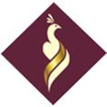 معرفی استارتاپ می شان ، ارائه خدمات مشاوره و اجرای طراحی کمپین های برندسازی و تبلیغات