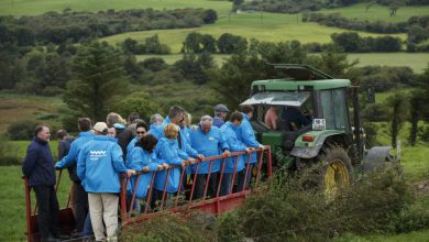 فرصت ها و چالش های گردشگری کشاورزی