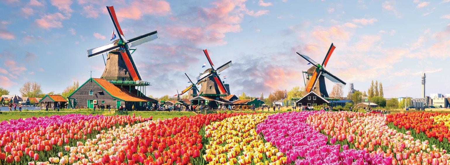 نمایشگاه گل در کشور هلند
