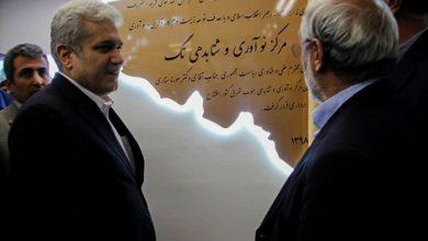 «مرکز نوآوری وشتابدهی تگ» در شهر کرمان افتتاح شد