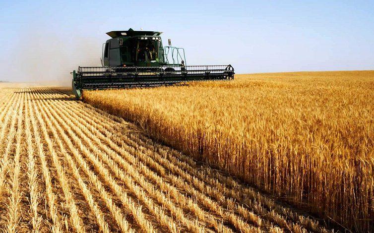 برگزاری رویداد استارت آپ کشاورزی و امنیت غذایی