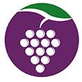 معرفی استارتاپ میدان، لینک خریداران و فروشندگان محصول و خدمات کشاورزی