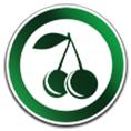معرفی وبسایت کافه میوه، سامانهی فروش اینترنتی میوههای با کیفیت
