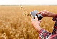 بررسی سرمایه گذاری در فناوری کشاورزی مواد غذایی در 2019