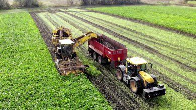 Photo of InstaAgro، بازار برخط ملزومات کشاورزی