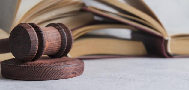 افتتاح پردیس نوآوری های حقوقی و قضایی
