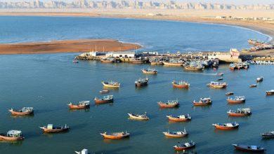 Photo of از ۵۰ شرکت دانش بنیان در راستای توسعه صنایع دریایی حمایت می شود