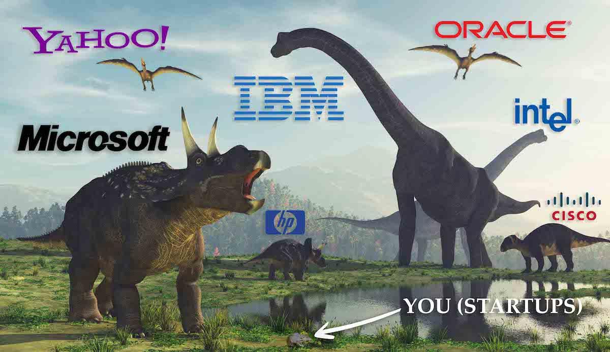 دایناسورهای اکوسیستم