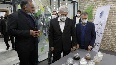 نخستین مرکز نوآوری صنعت غذا افتتاح شد