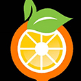 معرفي استارتاپ دیجی میوه، فروشگاه آنلاین میوه و سبزیجات