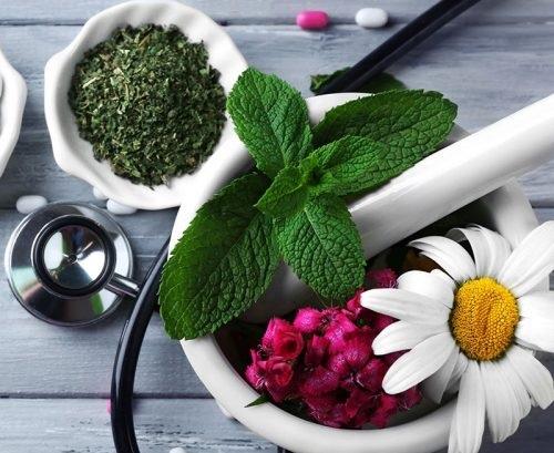 راه اندازی مرکز نوآوری و شتابدهی طب ایرانی و داروسازی سنتی
