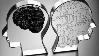 استارت آپ های هوش مصنوعی در پارک فناوری اطلاعات مستقر می شوند