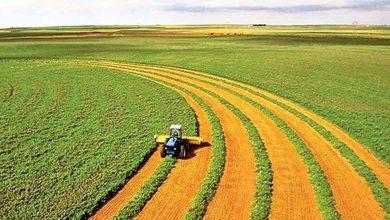 برگزاری رویداد فناورانه در حوزه کشاورزی ایران – هلند