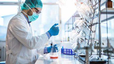 دستیابی به ۱۰ دانش فنی آماده واگذاری به بخش خصوصی در حوزه های بیوتکنولوژی