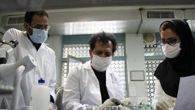 ۱۰ دانش فنی در حوزه بیوتکنولوژی آماده واگذاری به بخش خصوصی