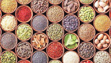 ۳۵ بسته حمایتی به پژوهشگران حوزه گیاهان دارویی ارائه می شود