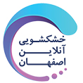معرفی استارتاپ اصفهان چهارصد و هفتاد و هفت، سرویس ارائه کلیه خدمات خشکشویی به صورت آنلاین