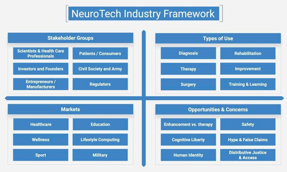 (ساختار صنعت NeuroTech)