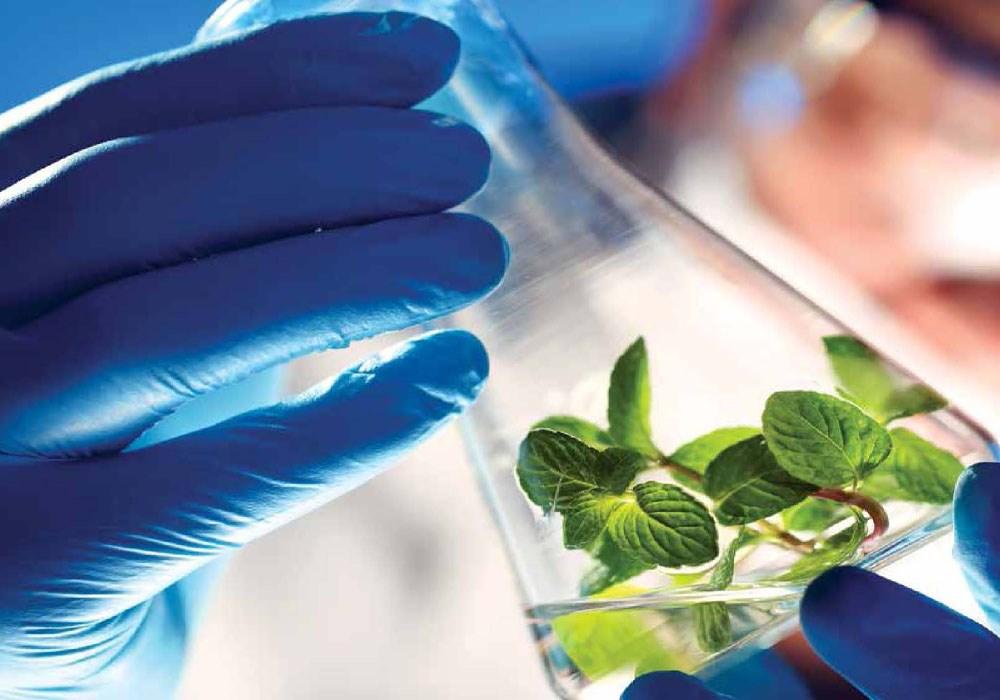 چهارمین همایش بینالمللی زیست فناوری آغاز می شود