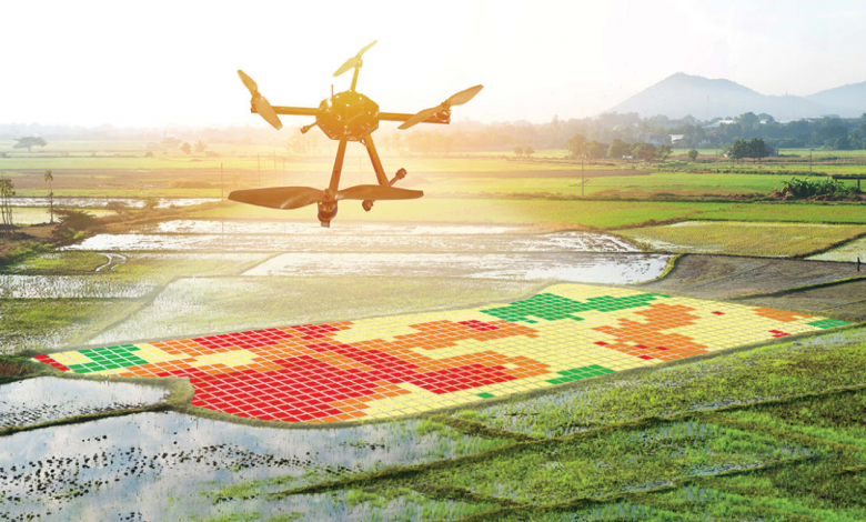 کشاورزی هوشمند؛ نقش رو به رشد کشاورزی دقیق و بیوتکنولوژی