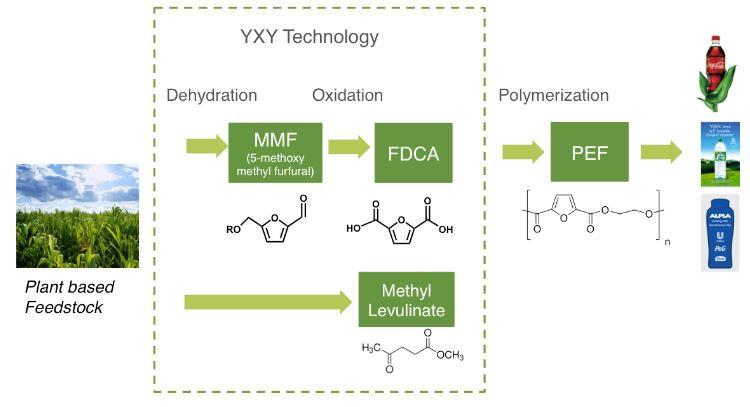 (فرآیند استفاده از مواد اولیه تجدیدپذیر برای تولید PEF از طریق سنتز شیمیایی. (منبع Avantium) )