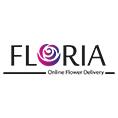 معرفي استارتاپ  فلوریا، فروشگاه آنلاین گل و گیاه